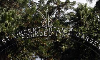Photo of the entranceway to the St. Vincent and the Grenadines Botanical Garden