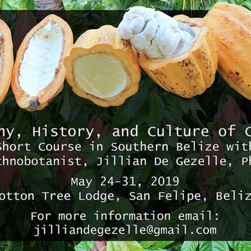 Botany History and Culture of Cacao