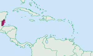 Location of Belize in the Caribbean